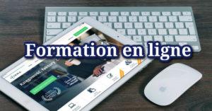 Formations auxiliothérapie en ligne
