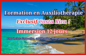 Immersion formation auxiliotherapie costa rica